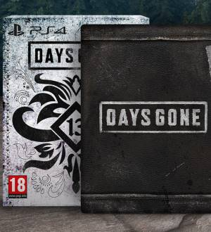 Sony Computer Ent. PS4 Days Gone Special Edition